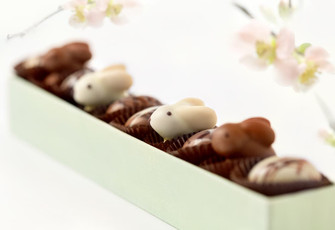 Pre-Order Easter Chocolates