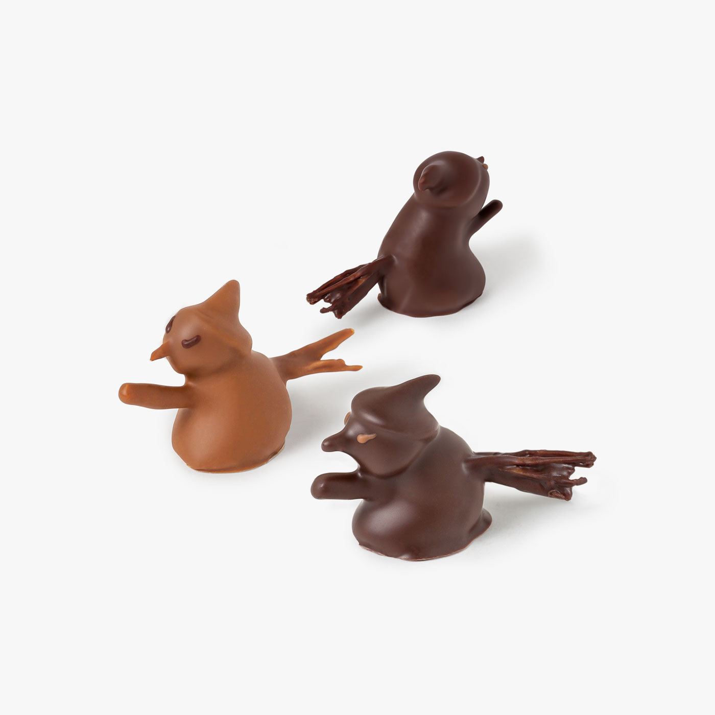 Box of 5 Chocolate Witches